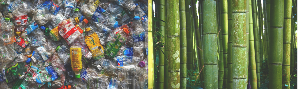zamien-plastik-na-bambus