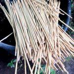 impregnacja bambusa