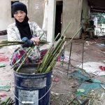 obróbka bambusa