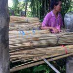 składowanie bambusa